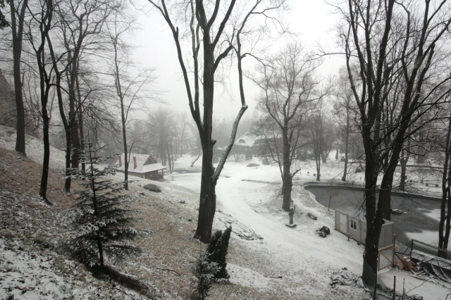 Snow at bran
